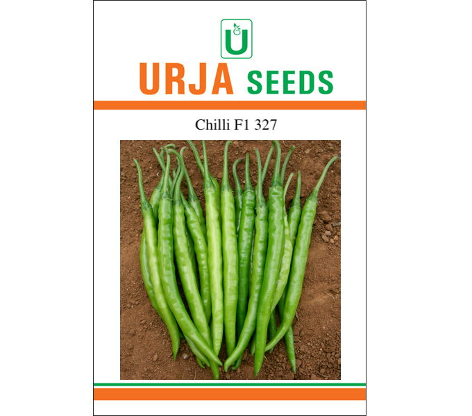 F1 Hybrid Chilli Seed