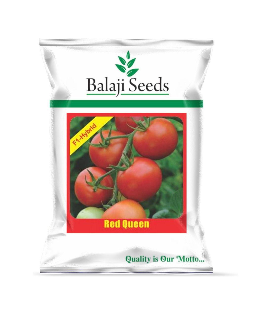 Hybrid Tomato