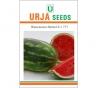 Hybrid Water Melon Seed