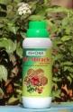 Biological Fertilizer