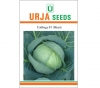 Hybrid Cabbage Seed