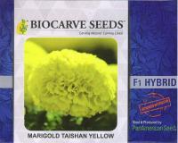 PanAm Premium High Quality Marigold F1 Taishan Yellow
