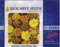 PanAm Premium High Quality F1 Marigold French Bonanza Mix