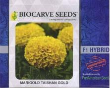 PanAm Premium High Quality Marigold F1 Taishan Gold