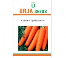 F1 Hybrid Carrot Seed